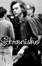 Schronisko (Harry Styles ff) by kajaastyles55