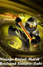 Ninjago Perfect Match Boyfriend Scenarios--Cole by NinjagoForever
