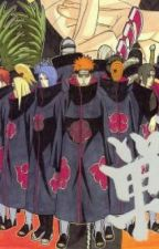 Akatsuki cats in the house... by Ambrose_Hater