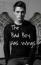 The Bad Boy Has Wings by ItsmeAllyxX