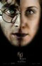 Harry si Ginny: Dupa Hogwarts by _ChosenOne_