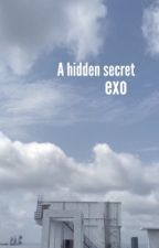 A Hidden Secret (Exo fan fiction) by WonderLand_Kisses