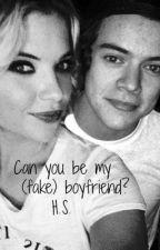 Can you be my (fake) boyfriend? || H.S by Leesgirlfriend