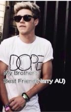 My Brother's Best Friend (Narry AU) by introvert_narry