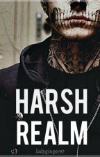 Harsh Realm by ladyginger97