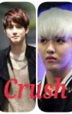 Crush by BreathForExo