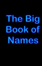 The Big Book of Names for boys by jellyfishguy