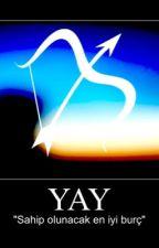 Yay Burcu by madam-