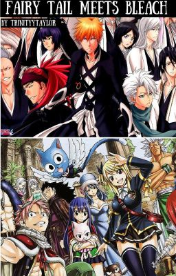 The Guardian of Fairy Tail || Bleach/FairyTail crossover