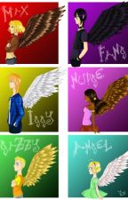 Maximum Ride One-Shots by Percy-Ride