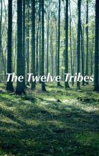The Twelve Tribes by evanrocks08