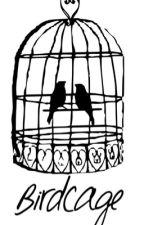 Birdcage - Larry Stylinson by LTandHSxx