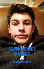 ❤Shawn Mendes Imagines❤ by ShawnRidesMuffins