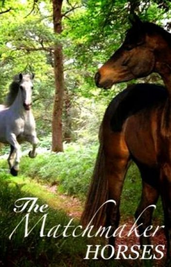 The Matchmaker Horses[On hold] [Kind of]
