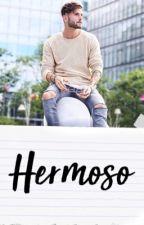HERMOSO by heylali