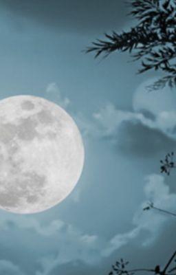 Kỳ án ánh trăng [phần 12]