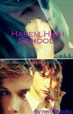 Harem High School (On Hold For Now) by nerdi4books
