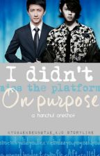 I Didn't Miss The Platform On Purpose (#Wattys2015) by kyubaekseungtae_kjd