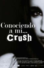 Conociendo a mi CRUSH [Lauren & Tú] by mxljauregui