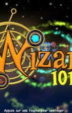 Wizard101 Guide by Jackey28732