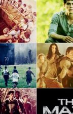 Maze Runner X Reader by 0l1v14_SPN_ALWAYS