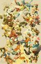 ~Pokemon One-shots~ by psychozelda