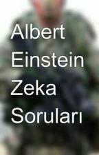 Albert Einstein Zeka Soruları by eneszp