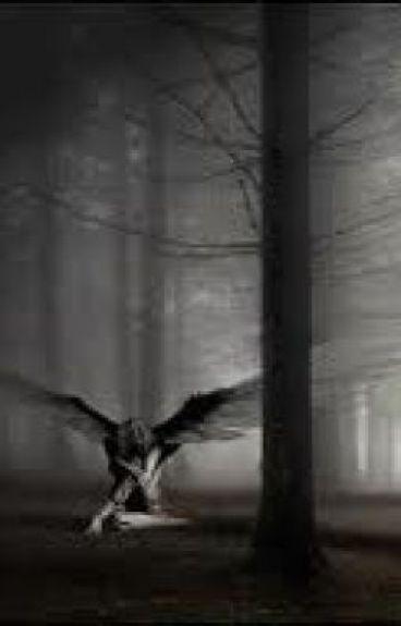 Fallen Hearts and Fallen Angels
