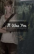 It Was You - A Newt Imagine by implicitlydemanding