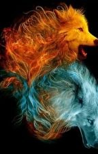 Fire and Ice by shep77712