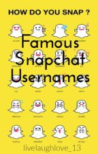 Famous Snapchat Usernames by livelaughlove_13