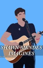 shawn mendes imagines by starlightmendes