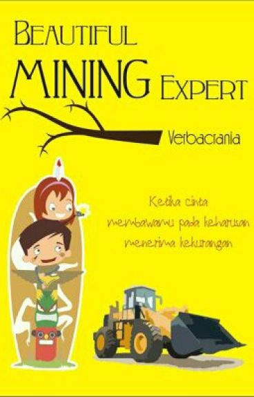 Beautiful Mining Expert