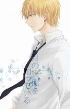 My Dear Kaichou !! Kise x reader by vanilla_tetsu