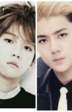 Stay with me forever (BaekHun) by KatspisandiexoL