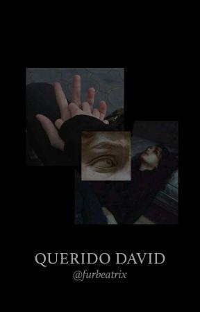 Querido David, by Boring-Princess