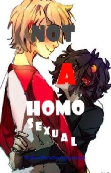 Not a Homosexual (Homestuck fanfic: DaveKat)