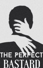 The Perfect Bastard (Zayn Malik Love Story) by astyles_horan