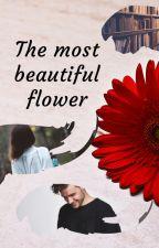 The most beautiful flower by Seekerofdreams_