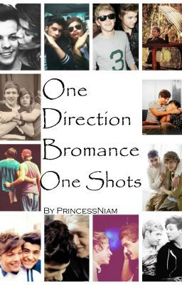 One Direction *Bromance* One Shots