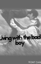 Living with the Bad Boy. by teenfictionwriter2