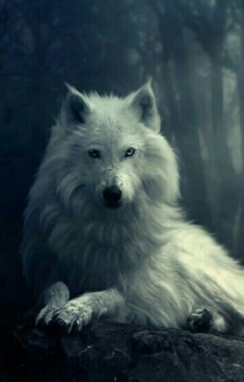True Blood Werewolf (Lesbian Story)