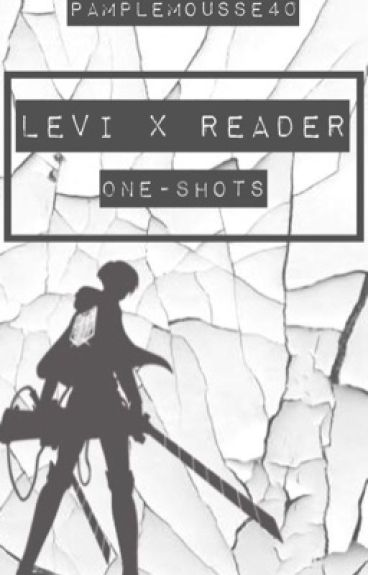 Attack On Titan: (Levi x Reader) One-Shots