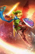 The Legend of Zelda: Hyrule Warriors by Cripzblood