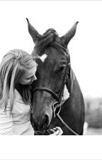 Heavenly by luv_wp_soccer_horses