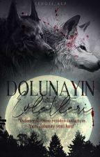DOLUNAYIN EVLATLARI  by Kitap_kurduu5