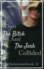 when the bitch and the jerk collided by thelovenotebook_11
