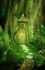 THE SECRET DOOR by cool_kids7