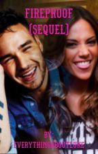 Fireproof // Liam Payne fanfic (sequel to Through the Dark) by everythingaboutluke