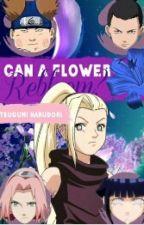 Can a Flower Rebloom? by 8MissMay8
